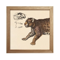 The Dybdahl - Animals (Cat front) - Mini Print 15x15