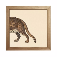 The Dybdahl - Animals (Cat back) - Mini Print 15x15