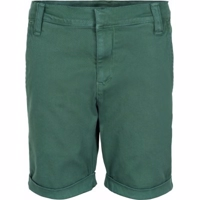 The New - GUSTAVO CHINO SHORTS Galapagos grøn